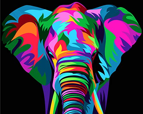"""Hiolife Paint by Numbers for Kids & Adults & Beginner , DIY Acrylic Painting Gift Kits , 20"""" x 16"""" Elephant"""