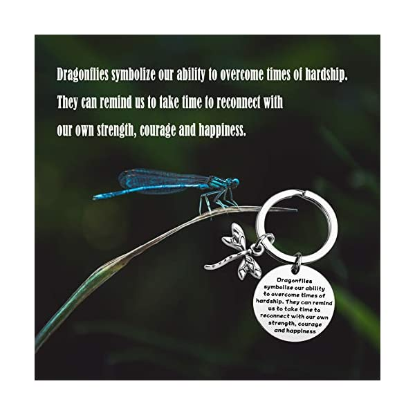 MAOFAED Dragonfly Gift Dragonfly Lover Gift Dragonfly Jewelry Dragonfly Inspirational Gift Encouragement Gift for Friend Dragonfly Spiritual Gift