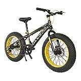 LYRWISHJD 24 Speed big wheel Mountain Bike Snow bike Cruiser Bicycle High-Carbon Steel Frame MTB with 4.0 fat...
