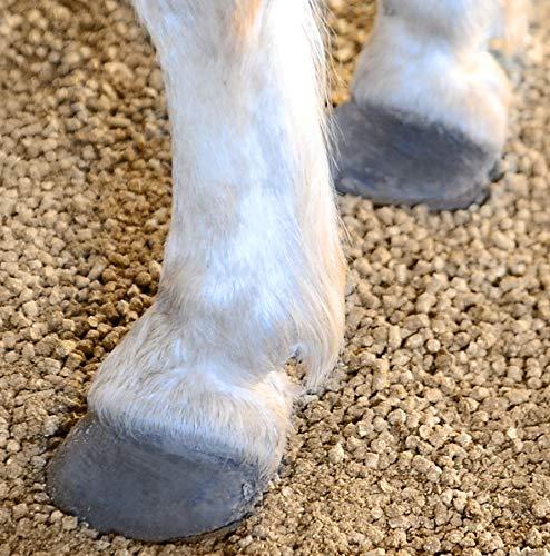 GreenFlax Flachs Leinen Pellets Pferdeeinstreu Kleintier Nager Leinen Pferde Einstreu Streu Antibakteriell 30 Kg