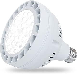 Best regular bulb in pool light Reviews