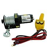 Carpoint 0623428 Cabrestante eléctrico 1000kg 12V 15 Metros