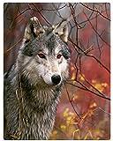 XZDPPTBLN Mantas de Franela Súper Suave de Lana Lobo Animal de Ojos Rojos Mantas con Estampados Esponjosa y Cálida Mantas para la Cama y el Sofá 180cm x 200cm
