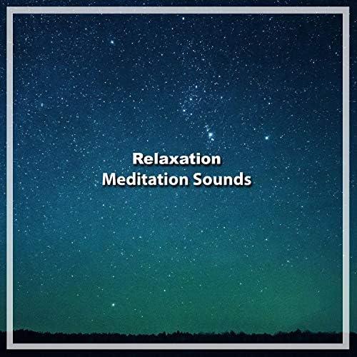 White Noise Relaxation, White Noise for Deeper Sleep, The White Noise Zen & Meditation Sound Lab