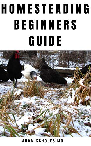 HOMESTEADING FOR BEGINNERS : Everything You Need To Know On Growing and Build A Profitable Homestead Backyard Farm and Make Money From Urban Farming. by [ADAM SCHOLES MD]