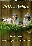 PON-Welpen - jeder Tag ein großes Abenteuer / Planer (Wandkalender 2020 DIN A3 hoch): PON-Welpen - einzigartige, sehr intelligente 'Teddybären' mit ... (Planer, 14 Seiten ) (CALVENDO Tiere)