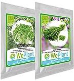 BIO Crescione & Erba cipollina - Set di semi di piante di erbe - interno/esterno...