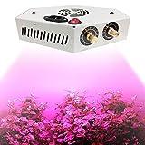 Galapara 1000W COB Pflanzenlampe LED Grow LightLicht für Zimmerpflanzen Verstellbare Vollspektrum-Pflanzenlicht Wachsende Lampen mit Gemüse und Blüte für das Pflanzen im Keller