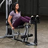 Fitness Factory Optional Leg Press for The BSG10X Home Gym