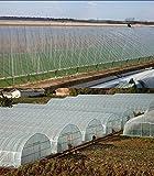 Mitef - Manta de plástico Transparente para Invernadero, Resistente a los Rayos UV, Cubierta para...