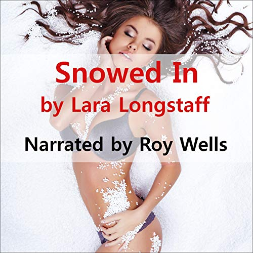 Snowed In cover art