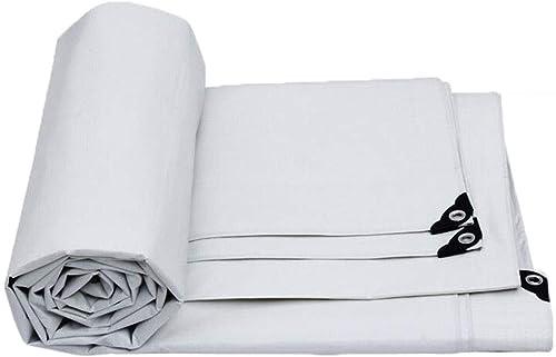 TAO-bache extérieure antipluie, Tissu en Plastique de Prougeection Solaire pour l'épaisseur 0.35mm de Camping extérieur, Taille de 10 (Taille   10x10m)