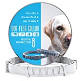 Best Flea Collars For Dogs - CRUZYO Flea and Tick Prevention for Dogs Review