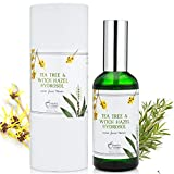 TEA TREE WITCH HAZEL FACE TONER - 100% Natural & Organic Ingredients, Astringent Facial Spray w/Apple Cider Vinegar - Reduce Blemish, Prevent Acnes, Restore pH, Tone. All Skin Type. Hello Cider