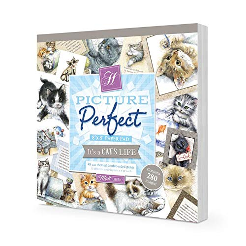 Hunkydory Crafts Bild Perfect – It's a Cat's Life