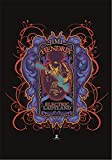 JIMI HENDRIX FLAGGE FAHNE POSTERFLAGGE PSYCHEDELIC ELECTRIC LADYLAND