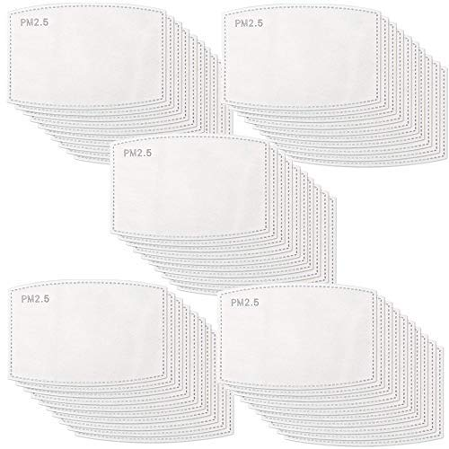 100 pack PM 2.5 Activated Carbon Filter Insert Ship from USA
