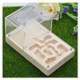 M3 Decorium Ant Farm Nest Honc Castle Caja de Yeso Jaulas de Mascotas Aprendizaje Educativo Kit de Ciencia Juguete para niños Adultos (Color : B, Size : 16x10x10CM)