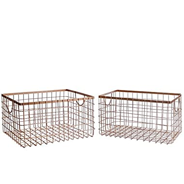 SLPR Wire Storage Shelf Basket (Set of 2, Copper) | Organizer Storage Container for Laundry Pantry Freezer Cabinet