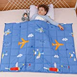 Sivio 5 lbs Weighted Blanket for Kids | 36'x48' | Weighted Blanket with 100% Cotton Premium Glass Beads | Perfect for Toddler Children from 30 to 60 lbs, Blue Airplane