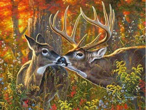 5D diamante bordado ciervo completo redondo diamante pintura animales punto de cruz mosaico diseño completo artesanía decoración del hogar A8 30x40cm