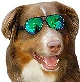 G010 Dog Pet Costume Prop Aviator Sunglasses Medium Breeds 20-40 lbs (Black-Emerald Mirror