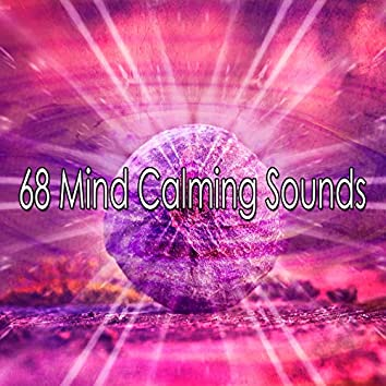 68 Mind Calming Sounds