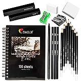 Zenacolor - Kit de Dessin Complet - 19 accessoires : 8 Crayon Papier, 3 Crayons Charbon, 1 Graphite, 3 Bâtons Charbon, Carnet de Dessin 100 Pages - Debutant ou Professionnel