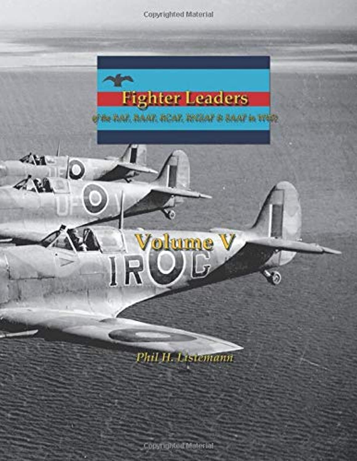 生産性冷淡な検出するFighter Leaders: of the RAF, RAAF, RCAF, RNZAF & SAAF in WW2