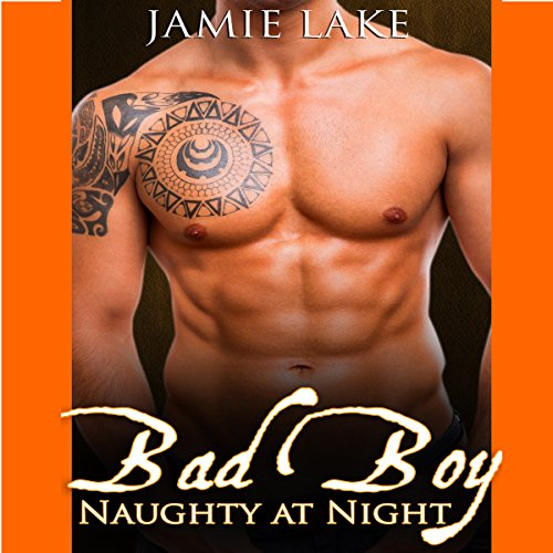 Bad Boy: Naughty at Night cover art