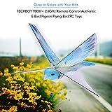 Huangwanru À Distance contrôle des Avions Authentique E-Bird Flying Pigeon Oiseaux RC Jouets 2.4GHz Télécommande pour Les Enfants (Color : Blue, Size : One Size)