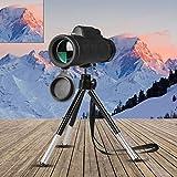 ZTING Monocularteleskop, Weitwinkel HD Nachtsicht-Prism-Bereich mit Kompass Telefonclip Tripod im...
