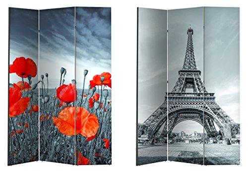 Unbekannt Paravent/Raumteiler/Spanische Wand/Trennwand versch. Motive (Mohn/Paris)
