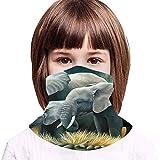 WH-CLA Polaina De Cuello para Niños, Una Familia De Elefantes Animal Sombreros Protección UV Bufanda Facial Sin Costura Pasamontañas Unisex Polainas De Cuello para Yoga Caza Pesca