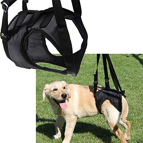 Größe klein Gehhilfe Hundegehilfe Hilfsgeschirr Stützgeschirr Hebehilfe Tragehilfe Geschirr