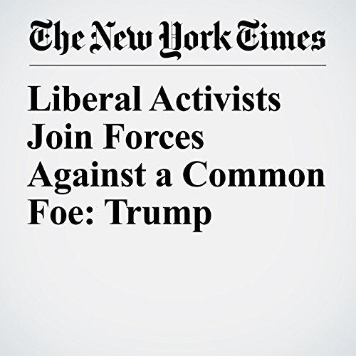 Liberal Activists Join Forces Against a Common Foe: Trump copertina