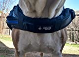 Canine Weight Set All New 5 in 1 Weighted Dog Vest - Helps Prevent Many Health Issues and Helps Enhance Performance - Weights On All 4 Legs - 2.5 LBS Weight Bags Included - Custom Handcrafted in USA