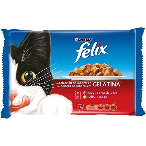 Purina Felix Gelatina comida para gatos con surtido de carnes 4 x 100 g