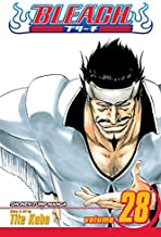 Bleach, Vol. 28: Baron's Lecture Full-Course