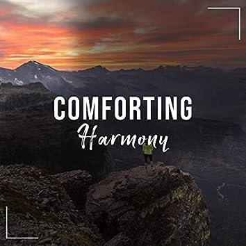 # 1 Album: Comforting Harmony