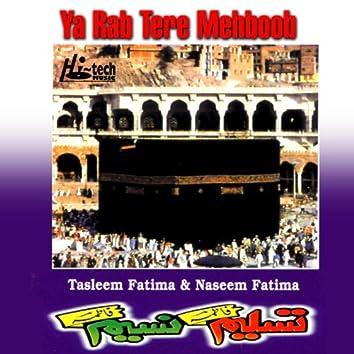 Ya Rab Tere Mehboob - Islamic Naats