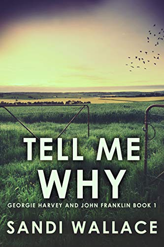 Tell Me Why (Georgie Harvey and John Franklin Book 1) (English Edition)