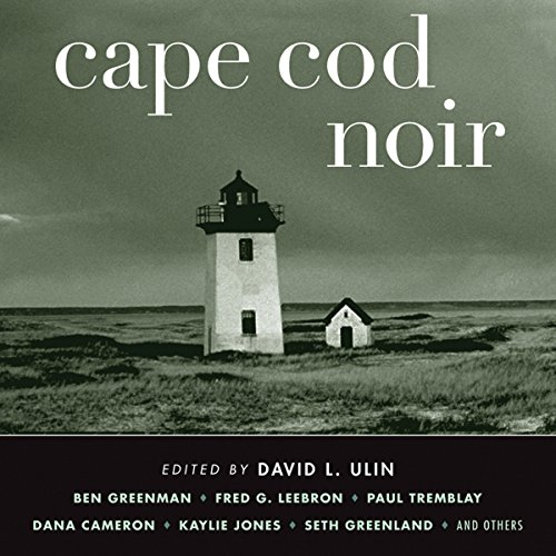 Cape Cod Noir audiobook cover art