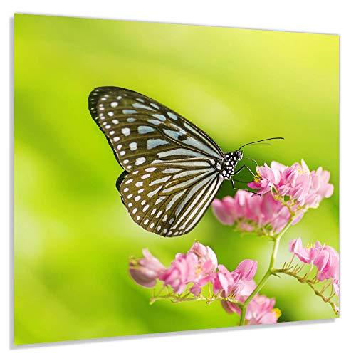 Gehard Glas Voor De Keuken - Met Afbeeldingen - 65x60cm - Model Id_0740