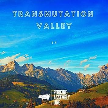 Transmutation Valley - EP