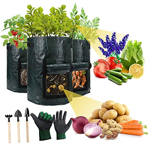 Heavy Duty Thickened Plants Grow Bags for Vegetables 3 Pack 10 Gallon Aeration Durable Fabric Pots with Handles amp Windows Flower/Potato/Fruits Grow Containers Indoor amp Outdoor