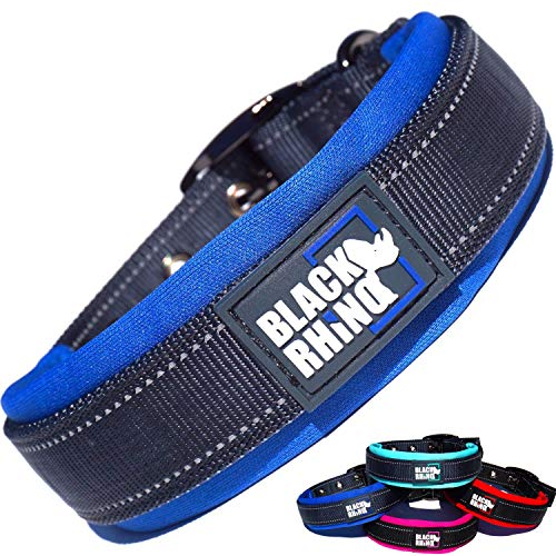 Most Comfortable Dog Collar