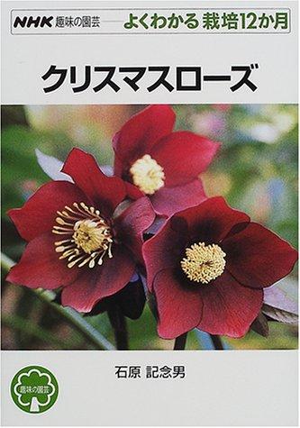 クリスマスローズ (NHK趣味の園芸 よくわかる栽培12か月)