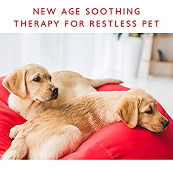 Make Your Dog Calm – New Age Soothing Therapy for Restless Pet