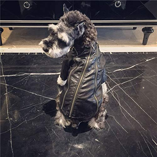 Miaoao-DG Hundekostüme for Haustiere, t, Motorrad-Lederjacke mit Reißverschluss, Punker Art-Winter Pet Jumper for Katzen kleine Hunde Kleine Tiere X-Mas Geschenke (Size : L)